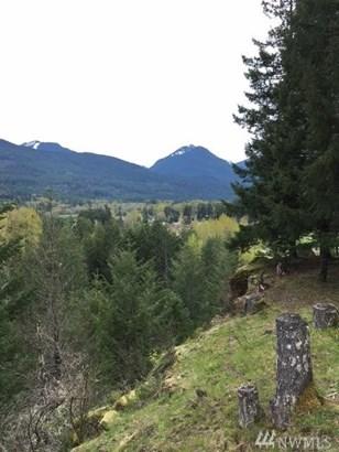 0 Alpine Dr, White Pass, WA - USA (photo 3)