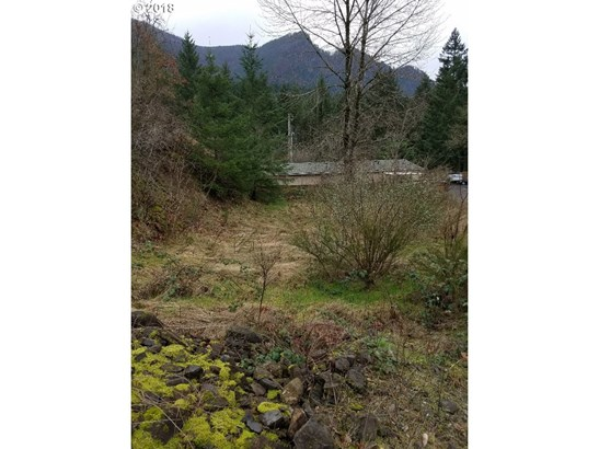 126 Slagle Ln, Cascade Locks, OR - USA (photo 1)