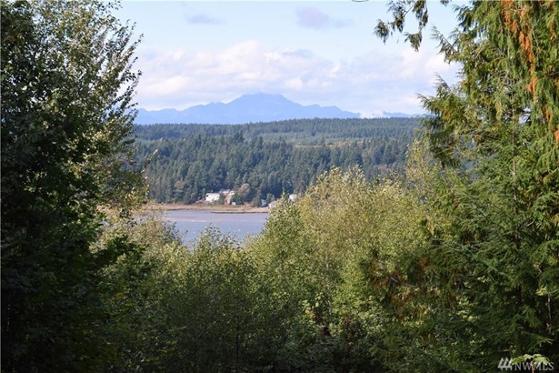 201 E Cove View Dr, Belfair, WA - USA (photo 1)