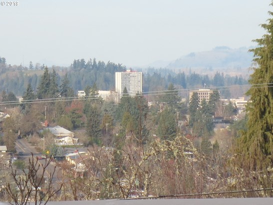 393 Fulvue Dr, Eugene, OR - USA (photo 2)
