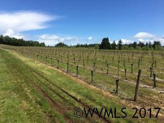 15335 W Ellendale Lot 802 Rd, Dallas, OR - USA (photo 2)