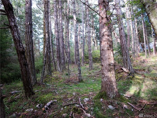 559 Orchard Dr, Orcas Island, WA - USA (photo 2)