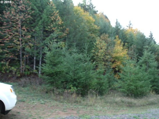 4218 Upper Smith River Rd, Drain, OR - USA (photo 3)