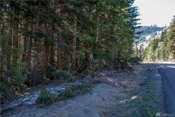 1 Innsbruck Dr Lot80, Snoqualmie Pass, WA - USA (photo 4)