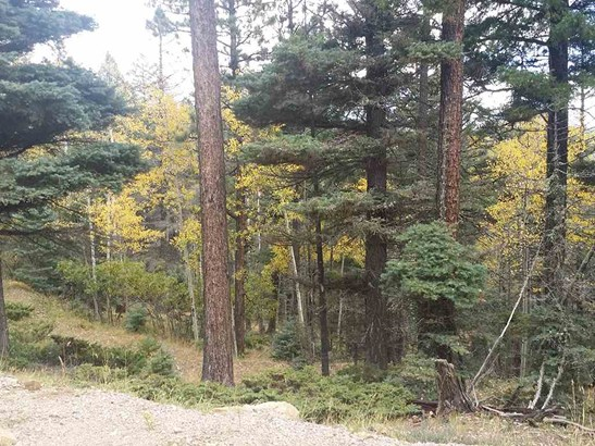 Residential Lot - Angel Fire, NM (photo 2)