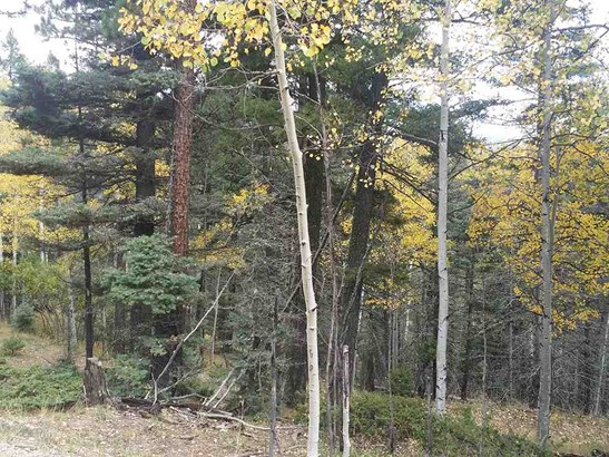 Residential Lot - Angel Fire, NM (photo 3)