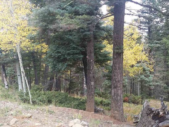 Residential Lot - Angel Fire, NM (photo 4)