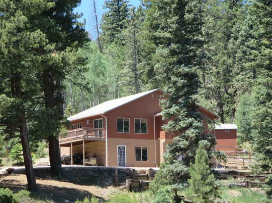 Chalet, Single Family - Taos, NM