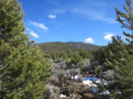 Residential Lot - Taos, NM (photo 2)