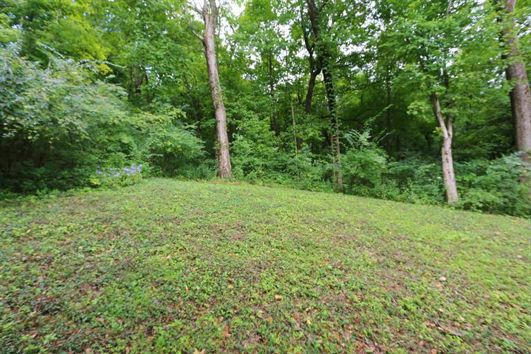 9676 Waxwing Dr, Blue Ash, OH - USA (photo 5)