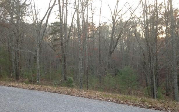 Vacant Lot - Blairsville, GA