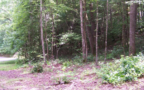 Vacant Lot - Andrews, NC (photo 2)