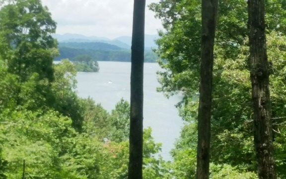 Residential, Ranch,Chalet - Hayesville, NC (photo 1)