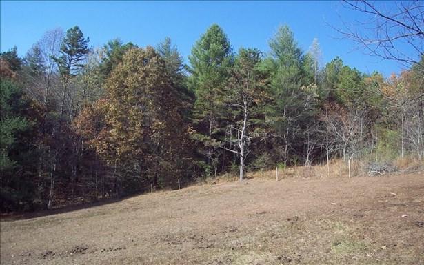 Acreage - Hayesville, NC (photo 5)