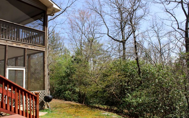 Residential, Traditional - Warne, NC (photo 5)