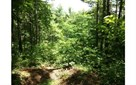 Vacant Lot - Brasstown, NC (photo 1)