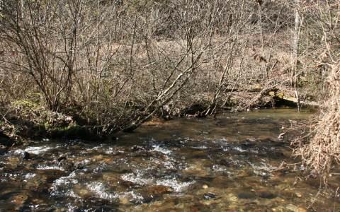 Acreage - Andrews, NC (photo 1)