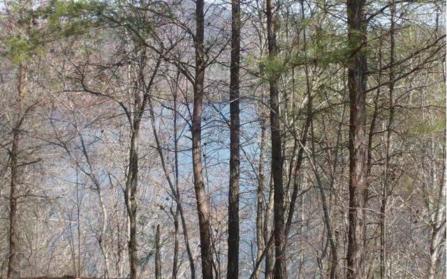 Lake Access Lot - Murphy, NC