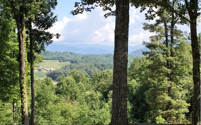 Residential, Ranch - Brasstown, NC (photo 2)