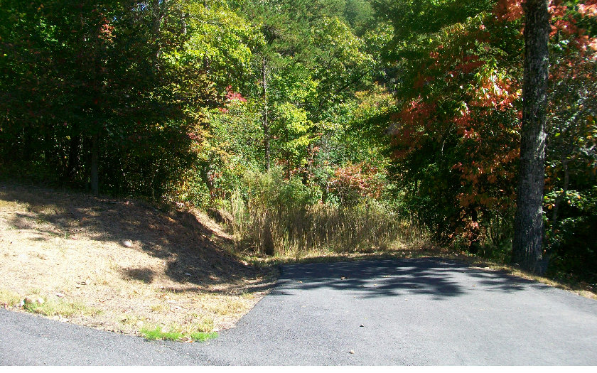 Vacant Lot - Brasstown, NC (photo 5)