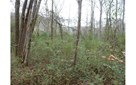 Vacant Lot - Marble, NC (photo 1)
