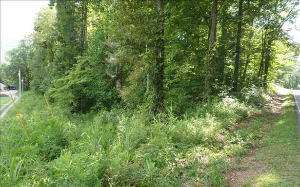 Vacant Lot - Hayesville, NC (photo 2)