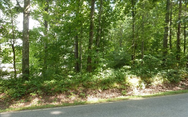 Vacant Lot - Hayesville, NC (photo 4)