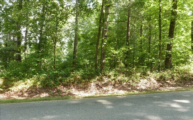 Vacant Lot - Hayesville, NC (photo 5)