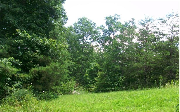 Vacant Lot - Turtletown, TN (photo 1)