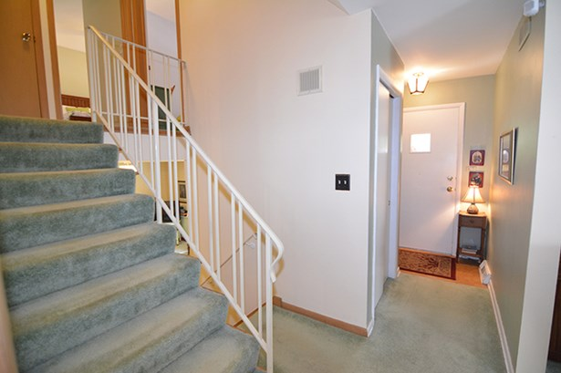 Split Level W/ Sub, Tri-Level - ELGIN, IL (photo 5)