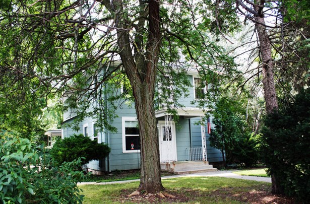 2 Flat, Farmhouse - SOUTH ELGIN, IL (photo 2)