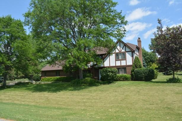 Tudor, 2 Stories - ELGIN, IL (photo 1)