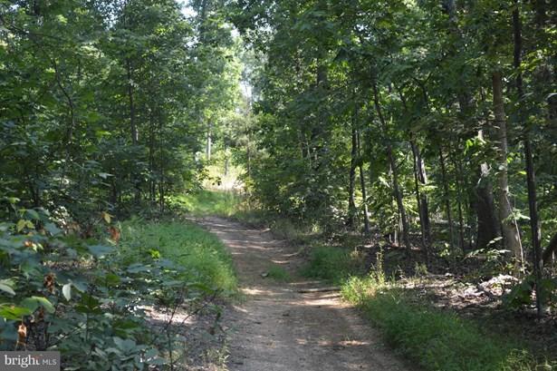 Land - FRONT ROYAL, VA (photo 1)
