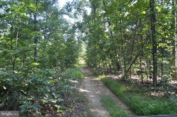 Land - FRONT ROYAL, VA (photo 3)