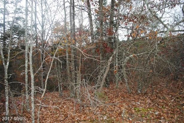 Lot-Land - FORT VALLEY, VA (photo 3)