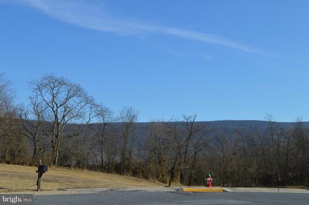Land - WOODSTOCK, VA (photo 2)