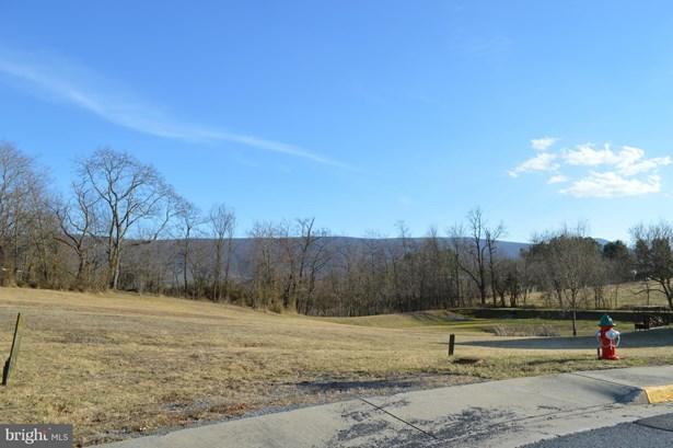 Land - WOODSTOCK, VA (photo 3)