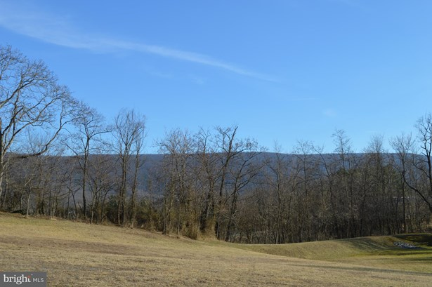 Land - WOODSTOCK, VA (photo 5)