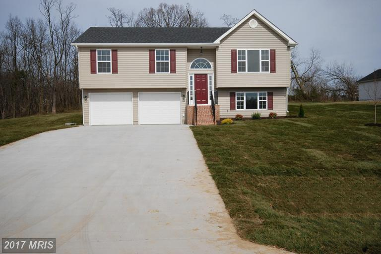Split Foyer, Detached - MAURERTOWN, VA (photo 3)