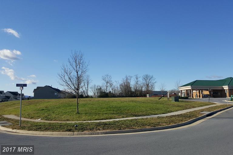 Lot-Land - STRASBURG, VA (photo 2)