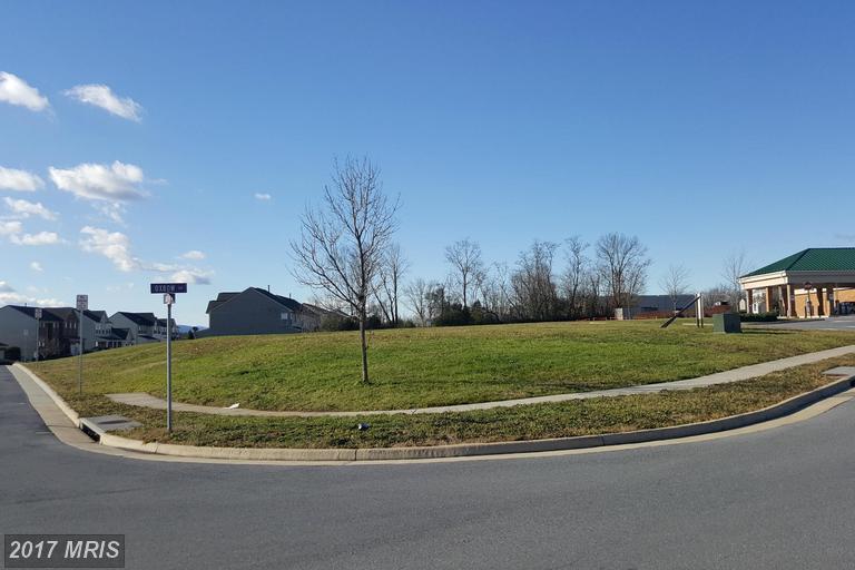 Lot-Land - STRASBURG, VA (photo 3)