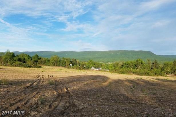 Lot-Land - MOUNT JACKSON, VA (photo 4)