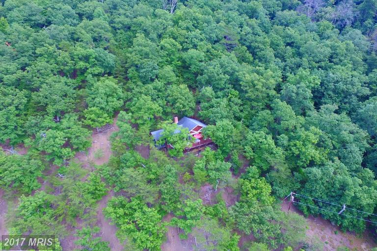 Cabin, Detached - MAURERTOWN, VA (photo 2)