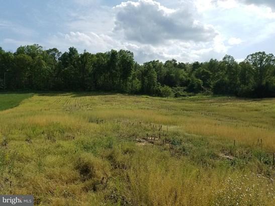 Land - QUICKSBURG, VA (photo 1)