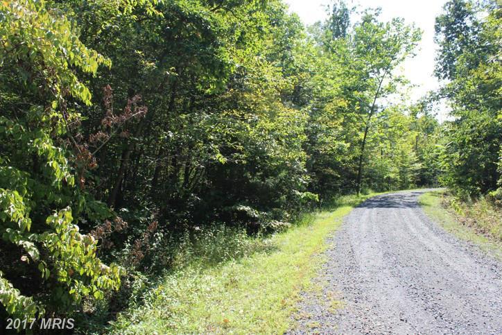 Lot-Land - MOUNT JACKSON, VA (photo 3)