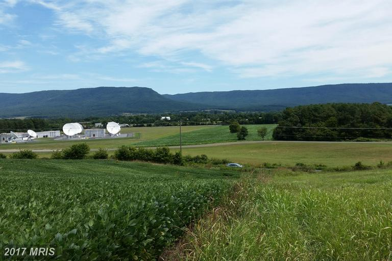 Lot-Land - QUICKSBURG, VA (photo 4)