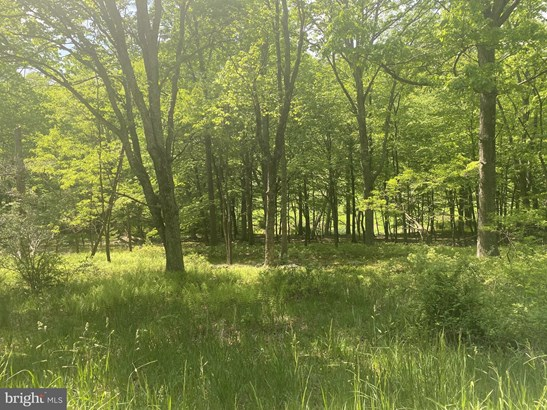 Vacant land - WARDENSVILLE, WV