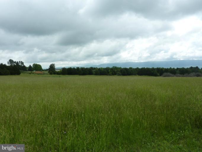 Land - EDINBURG, VA (photo 5)