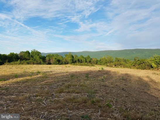 Vacant land - MOUNT JACKSON, VA (photo 3)