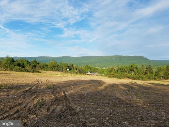 Vacant land - MOUNT JACKSON, VA (photo 4)